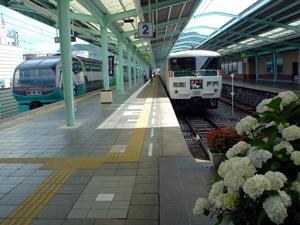 shimoda61207-2.jpg
