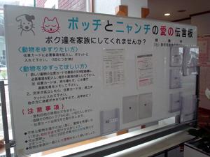 shuzenji61907-3.jpg